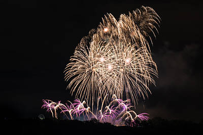 Sultry Plants - Beautiful colorful fireworks by Frank Gaertner