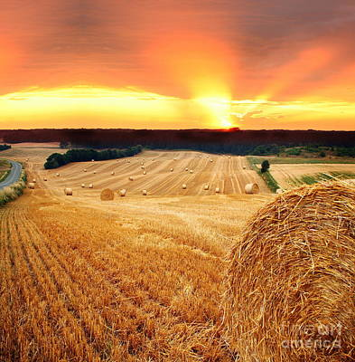 Beautiful Straw Bales Art Print by Boon Mee