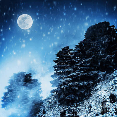 Snowy Night Photograph - Beautiful Winter Landscape by Anna Om