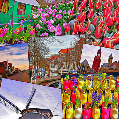 Photograph - Beauty Of Holland by Elvis Vaughn