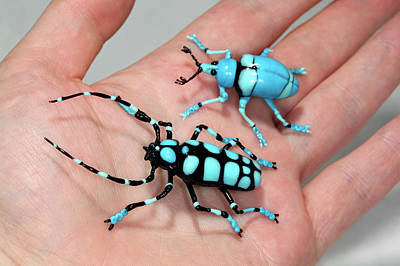 Hand Made Photograph - Beetles by Tomasz Litwin
