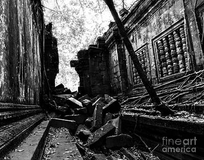 Tree Roots Photograph - Beng Mealea by Julian Cook
