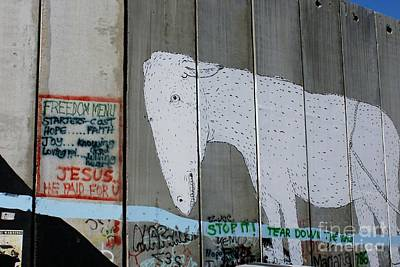 Photograph - Bethlehem Separation Wall by David Birchall