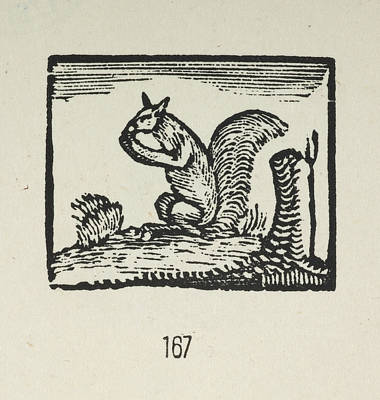 Bewick's Woodcuts Art Print by British Library
