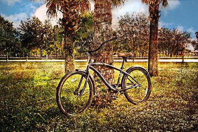 Beach Bicycle Photograph - Bicycle In The Park by Debra and Dave Vanderlaan