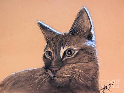 Drawing - Big Kitten by Michelle Wolff