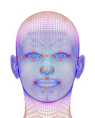 Biometric Facial Map Art Print