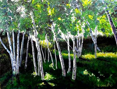 Painting - Birches In Fort Williams by Jack Riddle