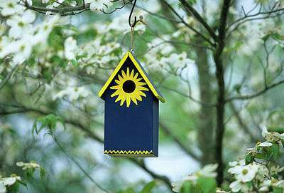 Cornus Photograph - Bird House Nest Box In Flowering by Richard and Susan Day