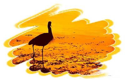 Reflections Photograph - Bird Silhouette by Scott Cameron