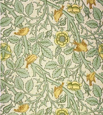 Botanical Art Drawing - Bird Wallpaper Design by William Morris