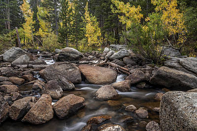 Photograph - Bishop Creek - Fall by Cat Connor