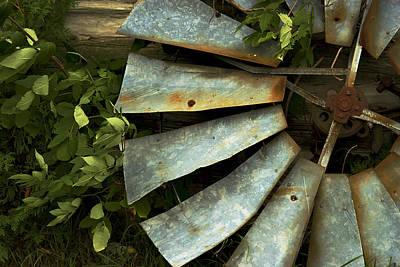 Photograph - Blades by Chuck De La Rosa