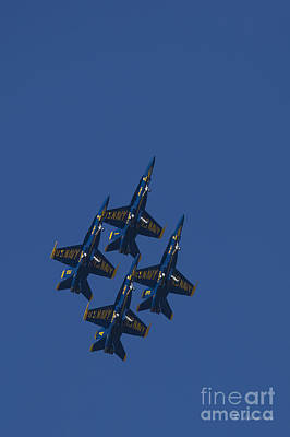 Photograph - Blue Angels Overhead 1 by D Wallace
