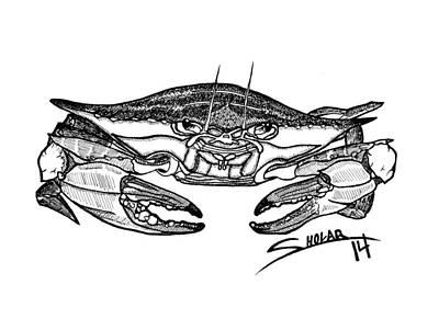 Blue Crab Drawing - Blue Crab  by Alex Sholar
