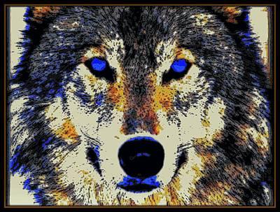 Wild Wolf Mixed Media - Blue Eyed Wolf by Wendie Busig-Kohn