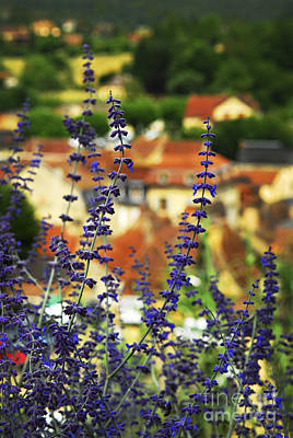 Blue Flowers And Rooftops In Sarlat Art Print