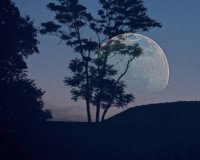 Photograph - Moon With Trees by Jodie Marie Anne Richardson Traugott          aka jm-ART