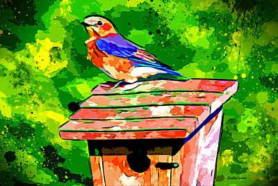 Bluebird Digital Art - Bluebird by Stephen Younts
