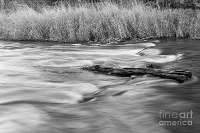 Photograph - Blur Motion Stream by Nick Jene