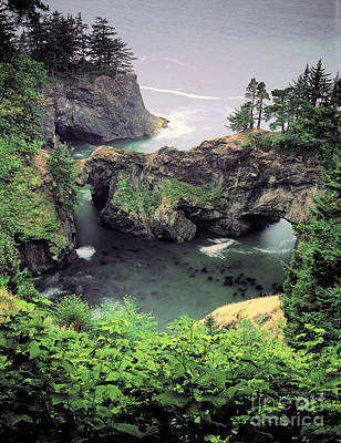 Natural Bridges State Beach Photograph - Boardman State Park, Oregon by George Ranalli