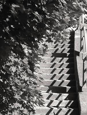 Photograph - Boardwalk 1 by The Art of Marsha Charlebois
