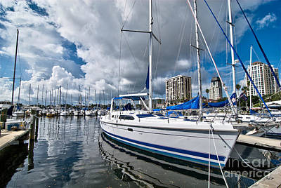 Sailboat Photograph - Boats In Marina Saint Petersburg Florida by Amy Cicconi