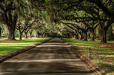 Photograph - Boone Plantation Road by John Johnson