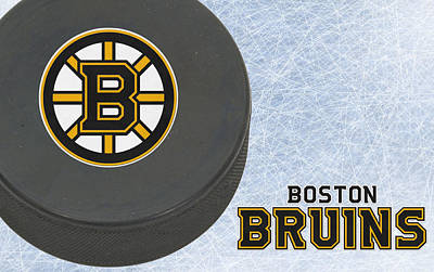 Bruins Photograph - Boston Bruins by Joe Hamilton