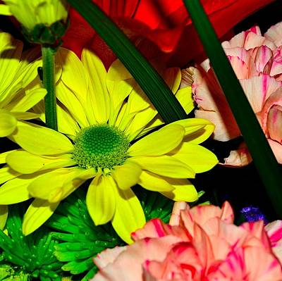 Photograph - Bouquet-of-flowers 3 by Richard Zentner