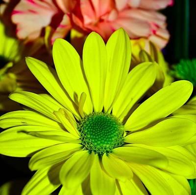 Photograph - Bouquet-of-flowers 4 by Richard Zentner