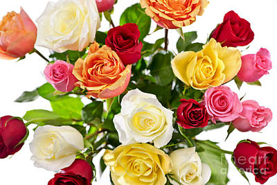 White Background Photograph - Bouquet Of Roses From Above by Elena Elisseeva
