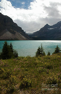 1010a Bow Lake Alberta Art Print