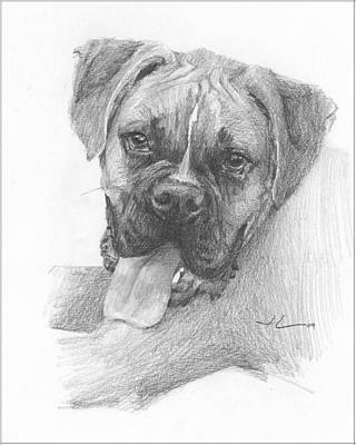 Boxer Dog Pencil Portrait Art Print by Mike Theuer