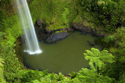 River View Photograph - Bridal Veil Falls, Near Raglan by David Wall