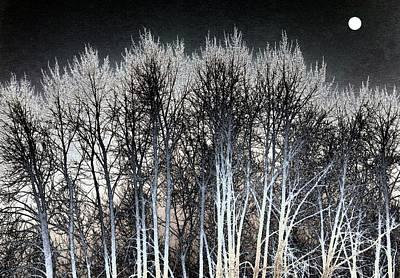 Digital Art - Bright Winter Moon by Will Borden