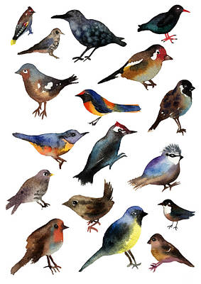 Bunting Painting - British Birds by Lydia Irving