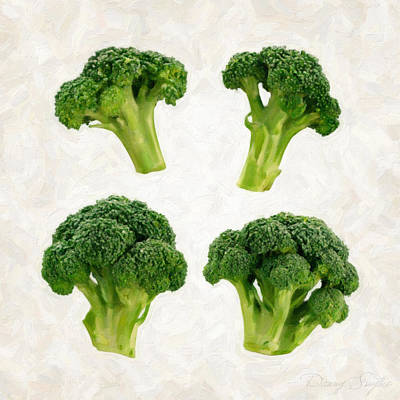 Studio Shot Photograph - Broccoli Isolated On White by Danny Smythe