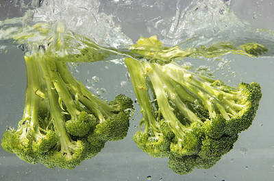 Broccoli Art Print by Science Source