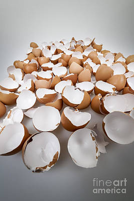 Broken Eggshells Art Print