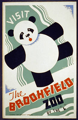 Brookfield Zoo Panda Art Print by Unknown
