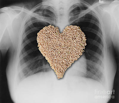 Heart Healthy Photograph - Brown Rice, Heart Healthy by Gwen Shockey