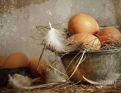 Brown Speckled Eggs  In Old Tin Bowl Art Print by Sandra Cunningham