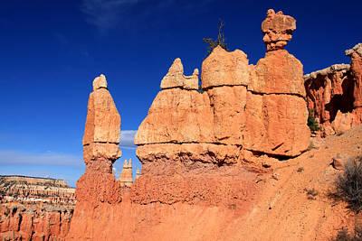 Designs In Nature Photograph - Bryce Canyon by Aidan Moran