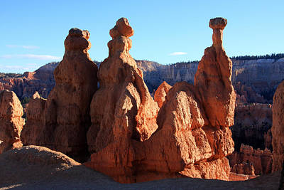 Photograph - Guardians Of The Canyon by Aidan Moran