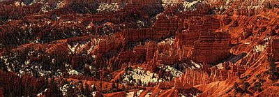 Photograph - Bryce Canyon by Ronald Lafleur