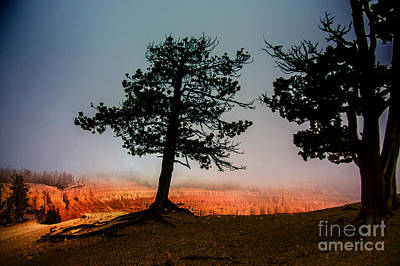 Photograph - Bryce Morning by Rick Bragan