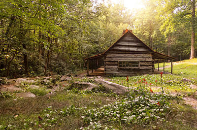 Photograph - Bud Ogle Cabin by Cindy Haggerty