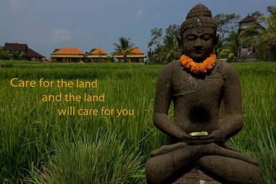 Buddha In The Rice Field Art Print
