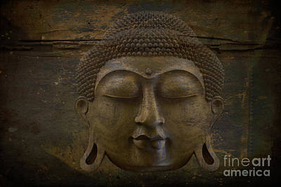 Photograph - Buddha by Sharon Mau
